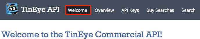 Welcome__-_TinEye_Commercial_API