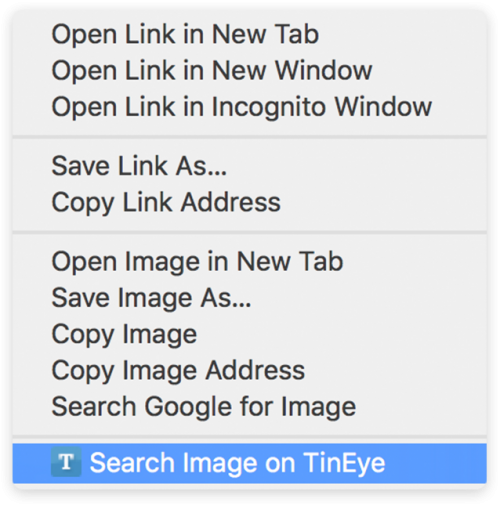 TinEye search extension